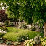 Ogród w domu opieki