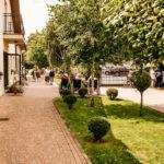 Dom seniora z ogrodem Warszawa